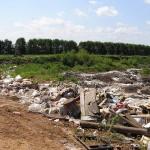 Можайское шоссе, обочина, мусор
