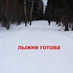 лыжероллерная трасса, Одинцово, Манжосовская гонка-2014, Манжосовская гонка-46, Новогодняя Манжосовская гонка, Манжосовская лыжня